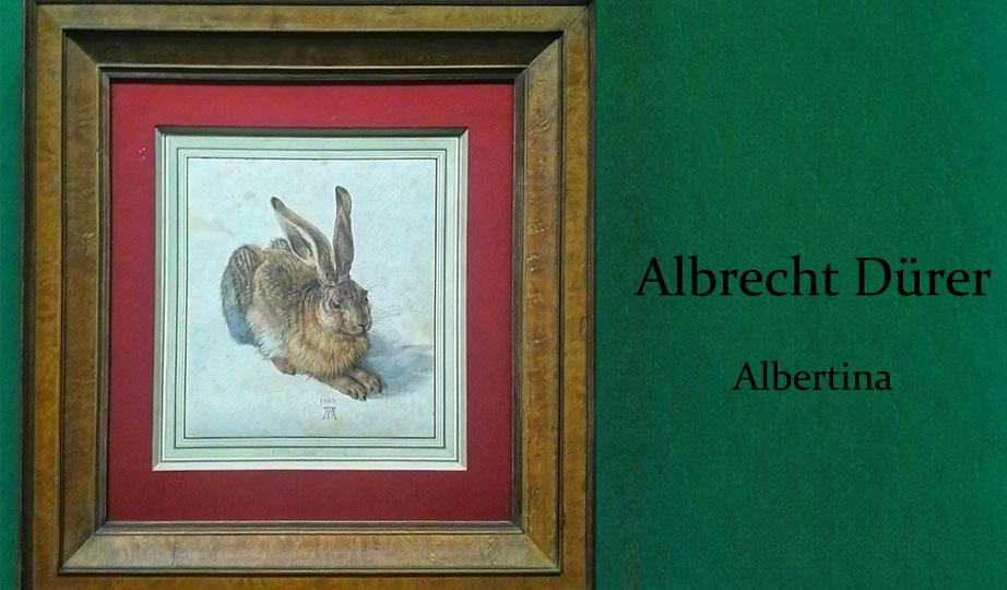 Albrecht Dürer Albertina